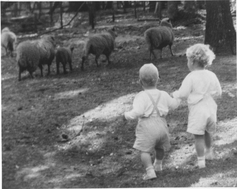 Alix:Grey 1960