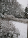 Snow_1221